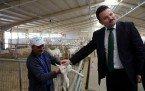 Demirci Kaymakamı Mutlu Akyol Saanen Keçi Çiftliğini gezdi