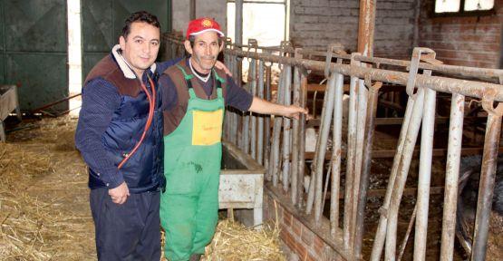 Türkiye'de tarım politikası yok