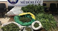 Polis göz açtırmıyor Demirci'de uyuşturucu ele geçirildi