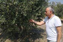 Organik Tarım ve İyi Tarım Desteği Kalkıyor Mu?