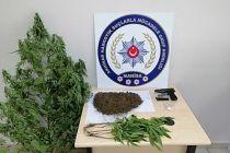 Uyuşturucu operasyonu 7 şüpheliden 1'i tutuklandı