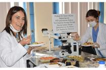 Covid-19 PCR Tanı Testlerini Yapan Personele Yemek Sürprizi