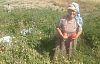 Demircili kadın yaşam mücadelesini kaybetti