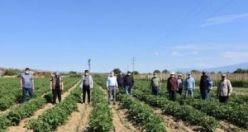 Çiftçilere Tarlada Bayram Ziyareti