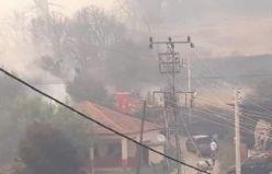 Orman yangını evleri de yaktı, mahallelerde halk ve hayvanlar tahliye ediliyor