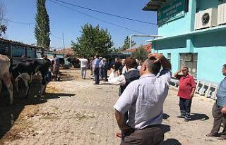 """Demirci'de bayram gündemi """"Mezbaha Skandalı""""..."""