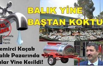 Demirci Kaçak Balık Pazarında Sular Yine Kesildi!