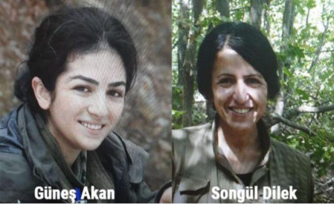 Bu defa kaçamadılar MİT ve polis operasyonunda yakalandılar